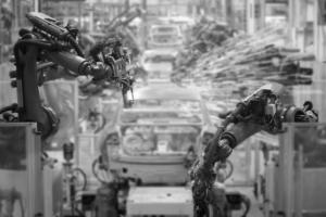 Client Services - Talos Automation